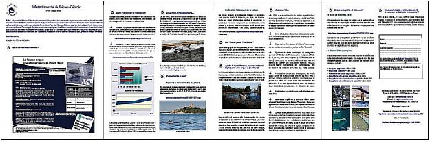 BRC 21- 4 pages-3.jpg